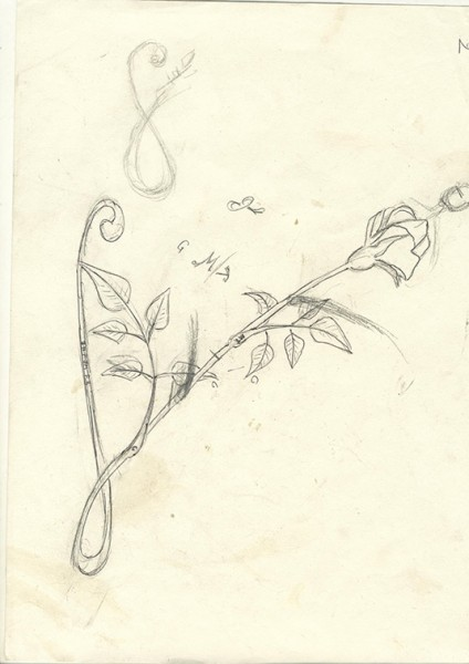 Rose en or - croquis